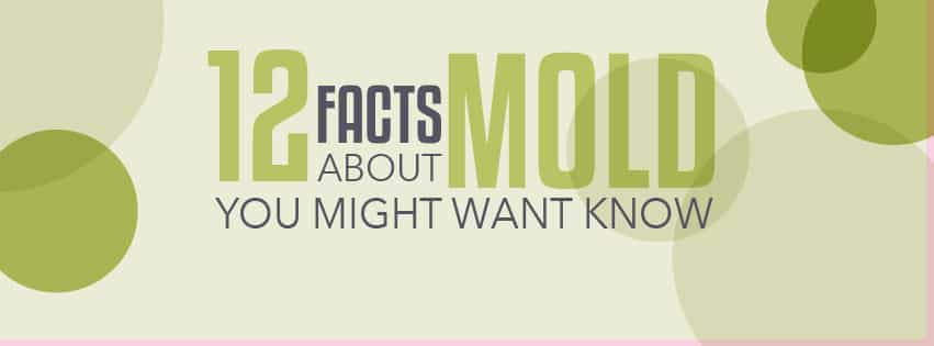 12 Mold Facts