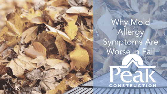 Why Mold Allergy Symptoms Are Worse in Fall