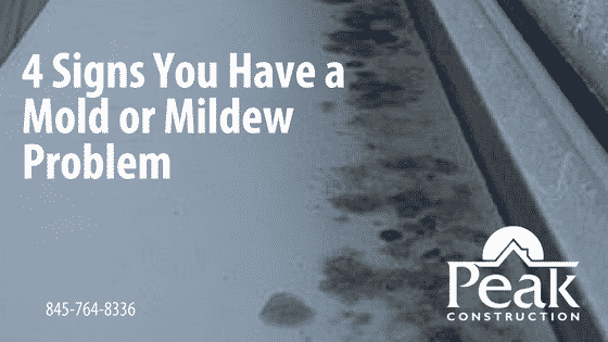 4 Signs You Have a Mold or Mildew Problem