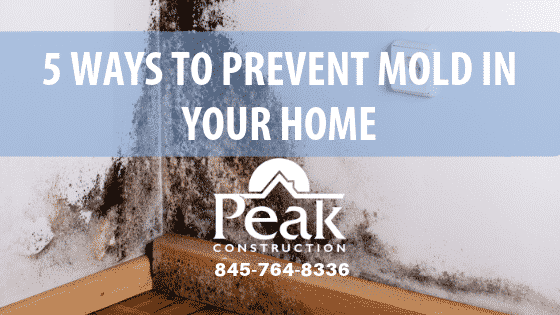 Mold Prevention | Hudson Valley | Peak Construction