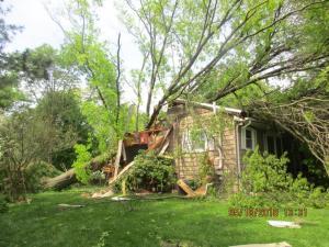 Fishkill Tree Strike